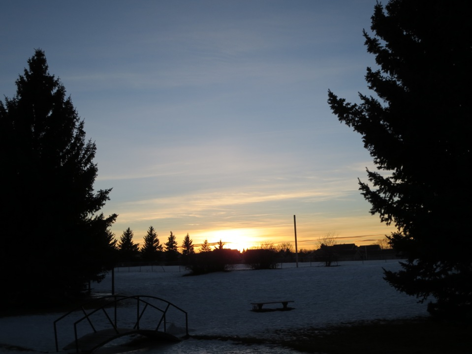 Sunset in the Park 1.16.14